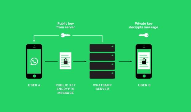 whatsapp-backdoor-sicurezza-3