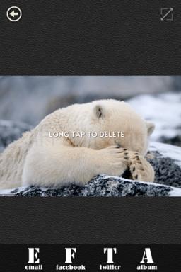 Pantalla de compartir fotos de la app FontGram