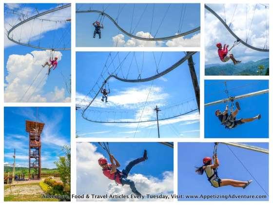 Avatar One Roller Coaster Zipline Collage 2