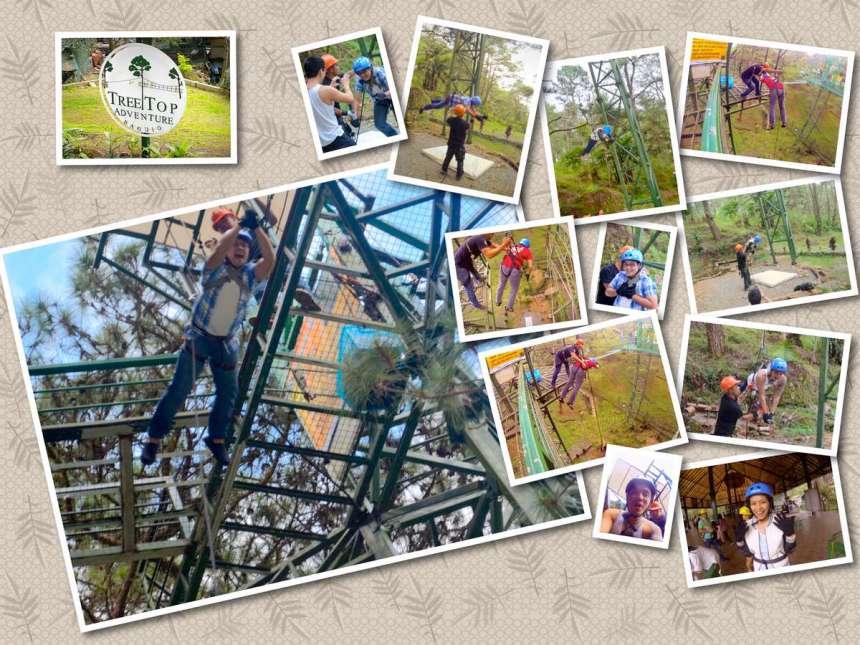 tree-drop-collage-2