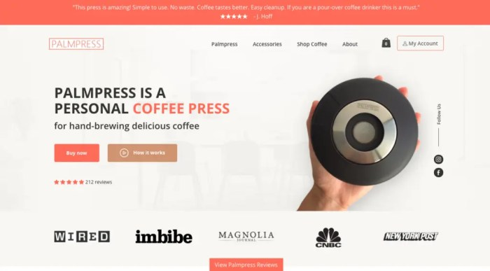 palmpress one product dropshipping store