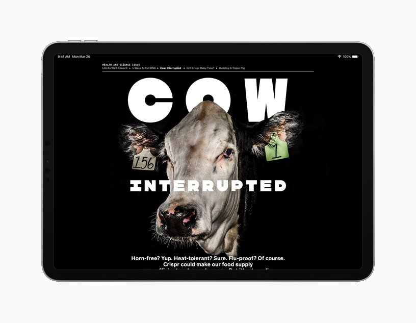 iPad showing Cow Interrupted article.