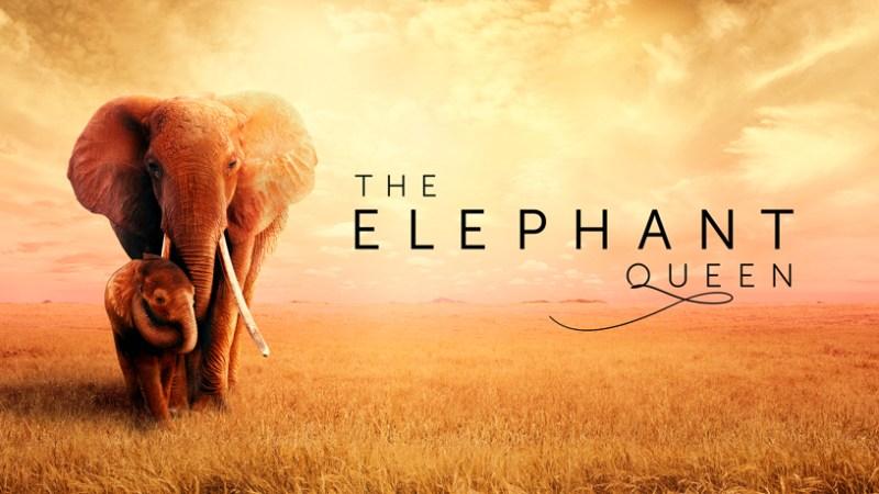 """Pantalla de título de Apple TV + """"The Elephant Queen""""."""