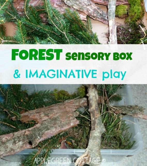 sensory bin ideas and imaginative play
