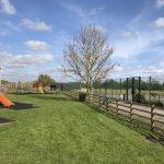 Appleton Wiske - Recreation Park