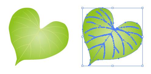 ハートの形をした葉っぱ