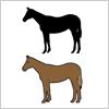 馬(サラブレット)のイラストと影絵素材
