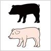 豚のイラストと影絵素材