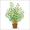 緑々しい植木鉢のイラスト