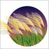 秋の七草のひとつ、ススキのイラスト