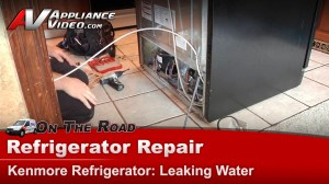 Kenmore 106535900 Refrigerator Diagnostic and Repair