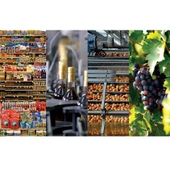 Lubricants for Food and Beverages Processing