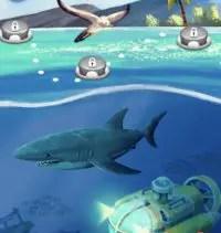 Codycross Im Meer Lösungen und Antworten