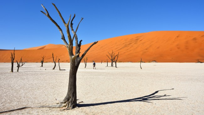 tagesrätsel namibia