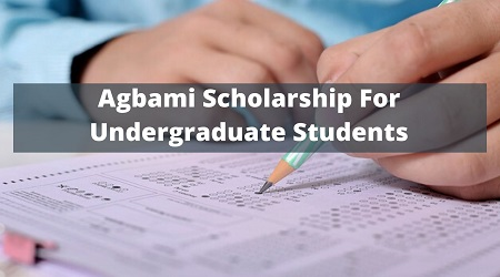 2020/2021 Agbami Undergraduate Scholarship Application Portal