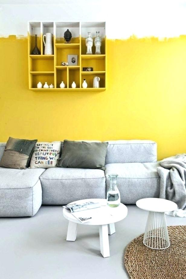 Yellow Accent Wall Bedroom Best Walls Ideas On Shelving Lemon Decoration Black In Green Colors Painting Blue With Grey Bedrooms Chocolate Apppie Org