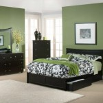 Bedroom Colour Of Wall In Modern Paint Designs Green Furniture Ideas Color Trends Teen Colours Instagram Avo Walls House Loft Combination Apppie Org