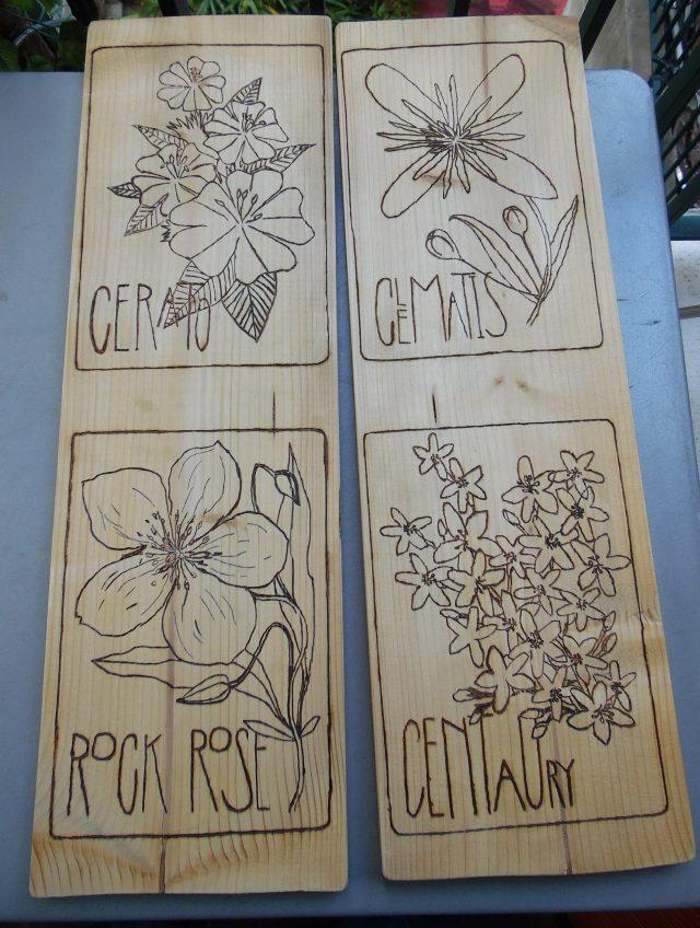 pyrogravure fleurs de bach