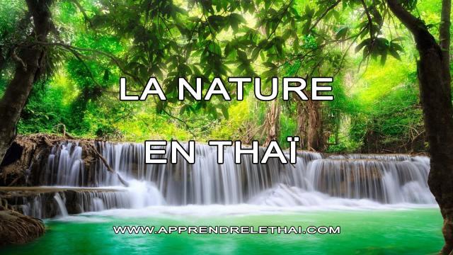 La Nature en Thaïlande