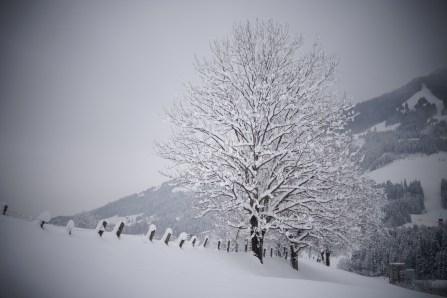 Westendorf sous la neige