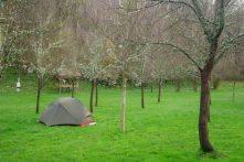 Jelen Camp
