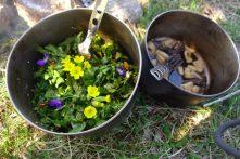 Salade sauvage et ses morilles grillées