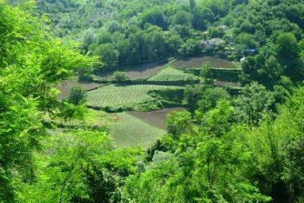 Les champs dans les montagnes albanaises