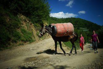 Chargé comme une mule. On croise plus d'ânes que de voitures