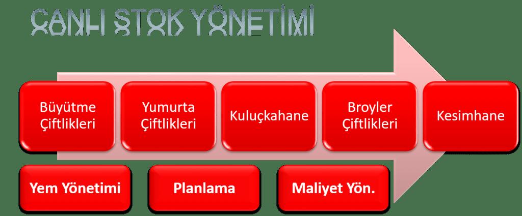 Akis_TR