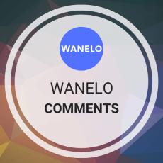 Buy Wanelo Comments
