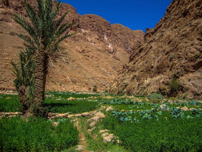Gargantas del Dades y ValleDelTodra-camino al desierto2