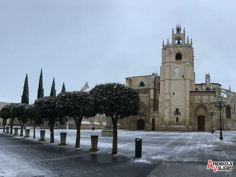 catedral palencia que ver
