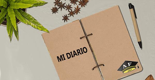 Hacer Diario