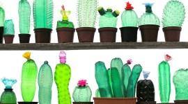 Upcycling / L'art du recyclage créatif