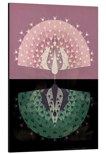 Peacock de Dieter Braun