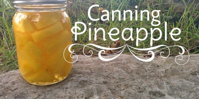 Canning Pineapple