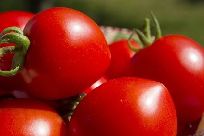 tomatoes-503447_1280