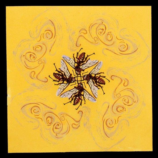 vortex-yellow