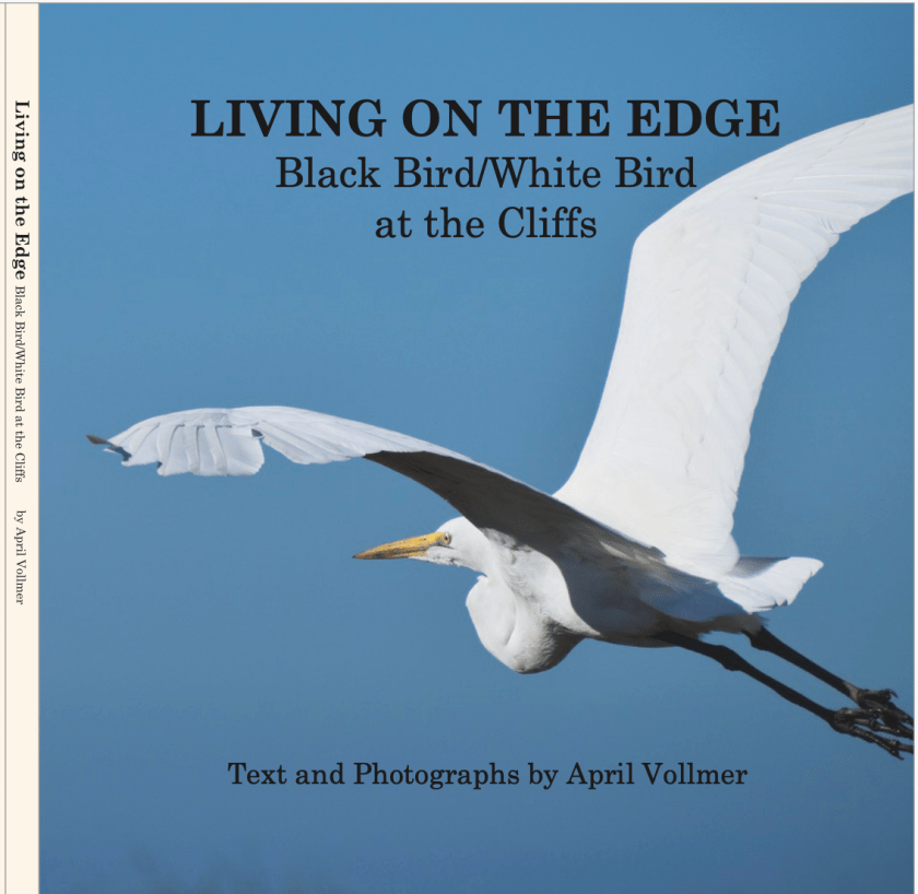 Book: Living on the Edge