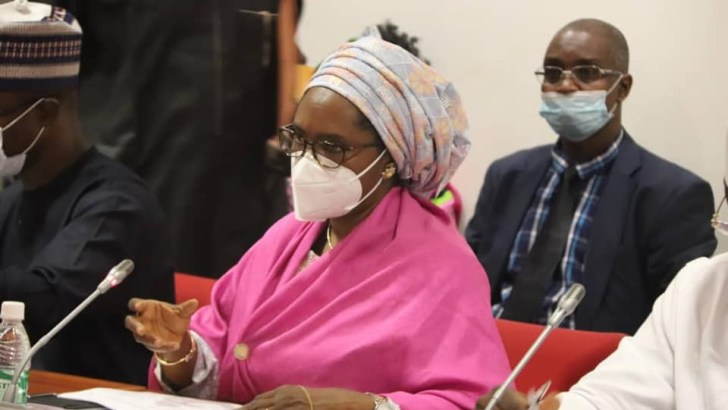 Mambilla Power Project Wasn't Prioritised by Ministry of Power—Zainab Ahmed