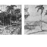 Desenhos recuperados de Mário Thomazi