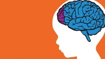 Palestra ensina a desvendar o cérebro das crianças e adolescentes