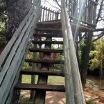 Escada para a luz – Cynthia da Rocha