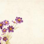 flores_pixabai