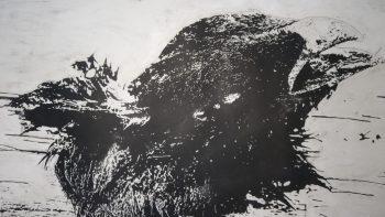 Salão de Arte Contemporânea na Pinacoteca Miguel Dutra
