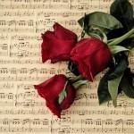 love-3076486_1920