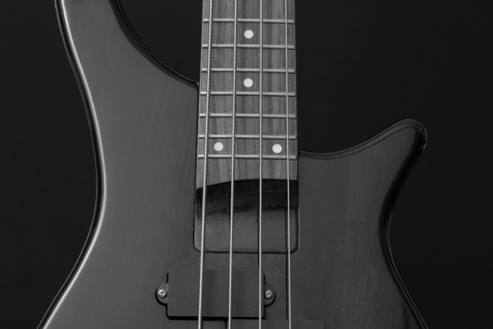 bass-guitar-894524_1920