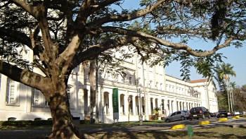 Biblioteca Central da Esalq digitaliza todo o acervo de teses
