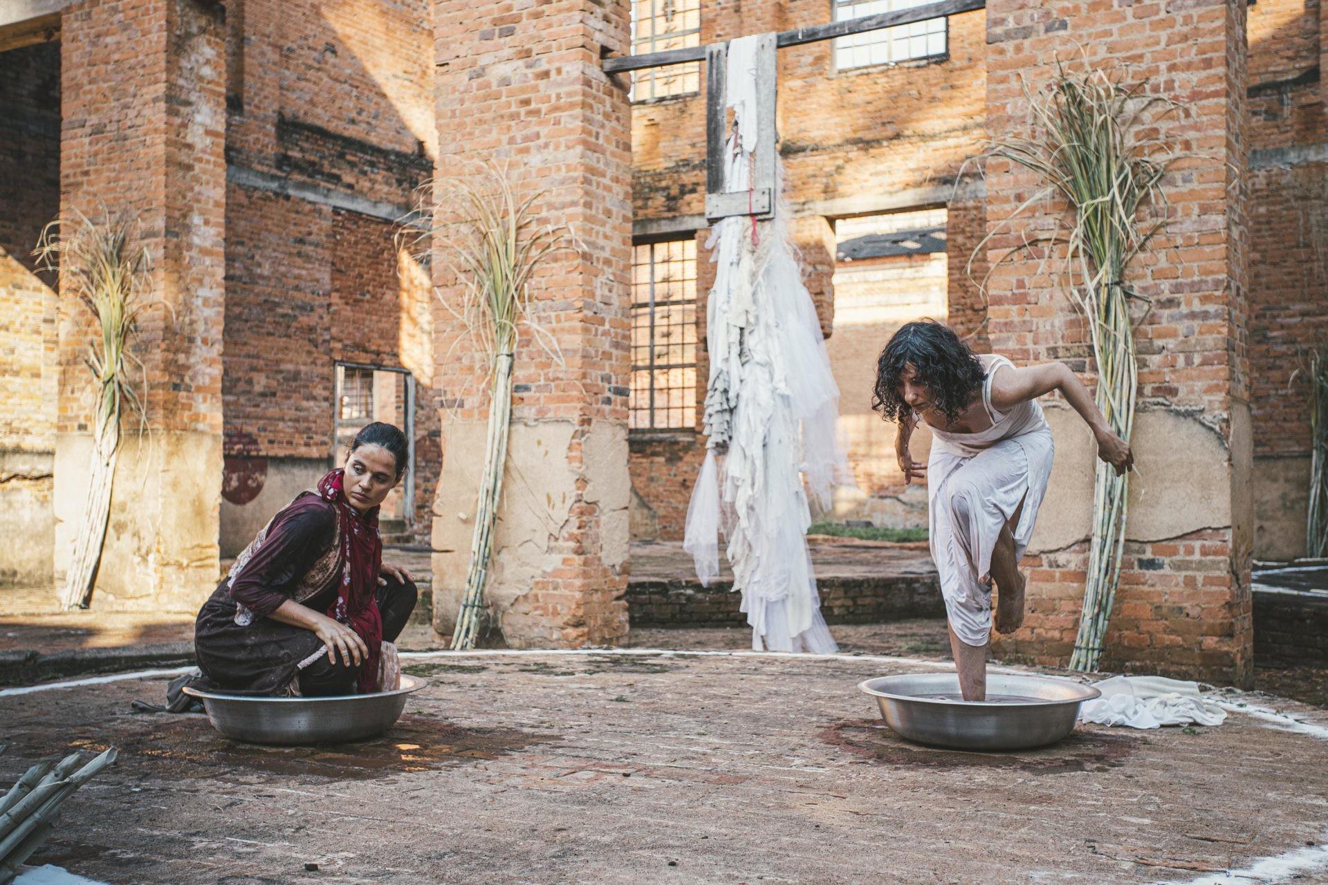 Espetáculo virtual de dança aborda as relações entre o Rio Piracicaba e a cana-de-açúcar