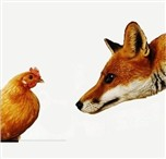 Raposa e galinha
